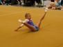 Landesbestenkämpfe u. Pfalzmeisterschaften 2018
